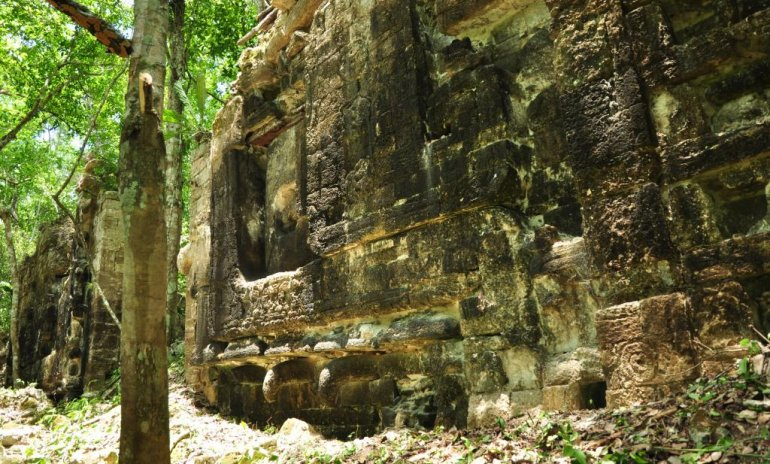 Обнаружены два новых города майя