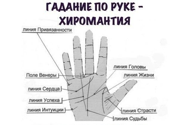 Как посмотреть свою судьбу по руке